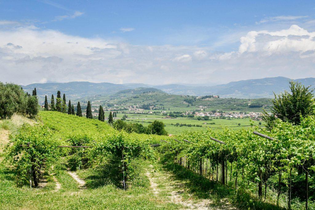 Valpolicella Cup - Garda Lake Area - Road to Sport